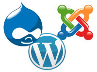 Joomla Drupal WordPress CMS Solutions